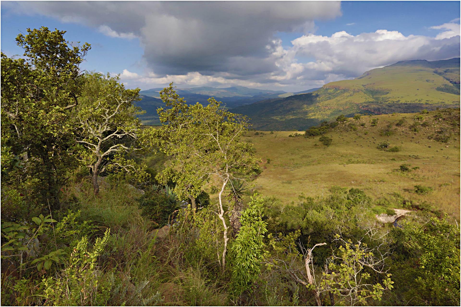 lodges in mpumalanga lodges